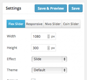 Meta Slider 2.6 Settings