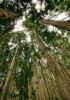 image-crop-3-70-100