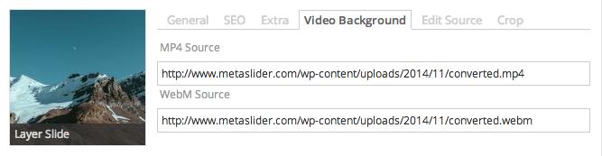Screenshot of Layer Slide background video tab