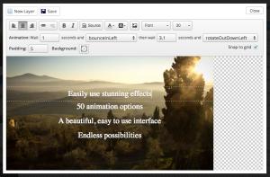 layer_editor